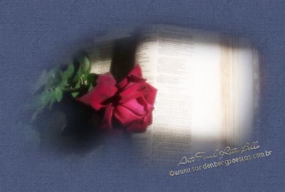 As poetisas